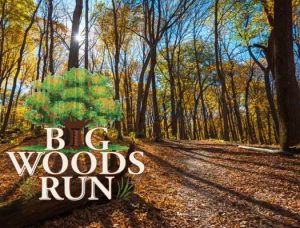 Big Woods Run 2018